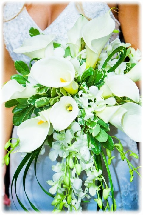 wedding flowers lilies 54 best lets talk about images on wedding 9602