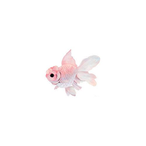 little pink fish - - - www.b-lissily.tumblr.com/post/40824762911/goutte-de-la-lune-on-we-heart-it