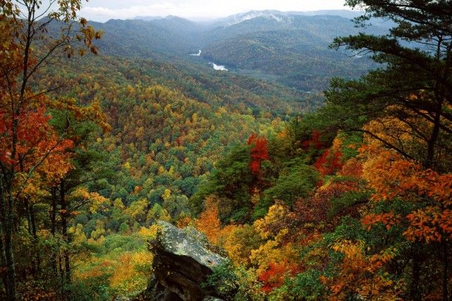Cumberland Gap National Park.  Where KY, VA, and WV converge.  Beautiful in the summertime, too