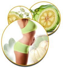 Natural Garcinia Cambogia - Top Natural Garcinia Brands