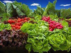 Vegetables, Tomatoes, Radishes, Salad