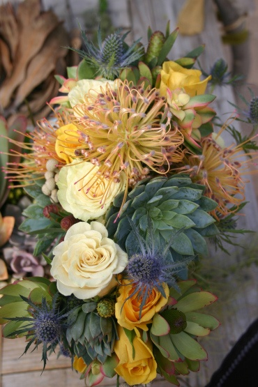 succulents and proteas - under the sea vibe
