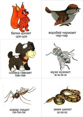 Как говорят животные(для деток от 12месяцев) - Раннее развитие - Babyblog.ru
