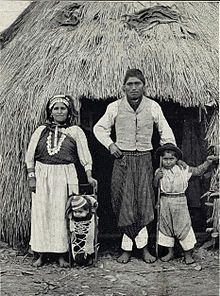 Mapuche - Wikipedia, the free encyclopedia