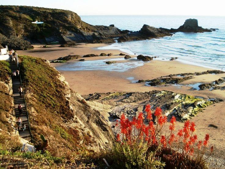 Beach in Costa Vicentina #portugal www.enjoyportugal.eu