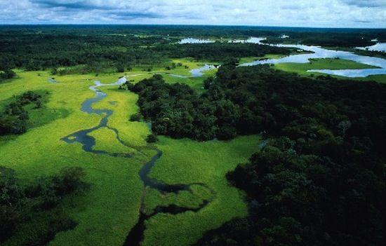 Tour Brasile meraviglioso: Rio - Iguassù - Foresta Amazzonica - Salvador de Bahia. Cercalo su: http://www.giroilmondo.net/it_IT/home.html
