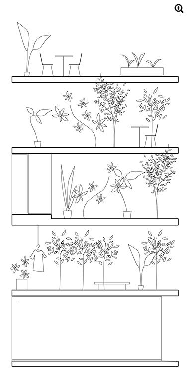 simple drawing trees section architecture sanaa - Google Search