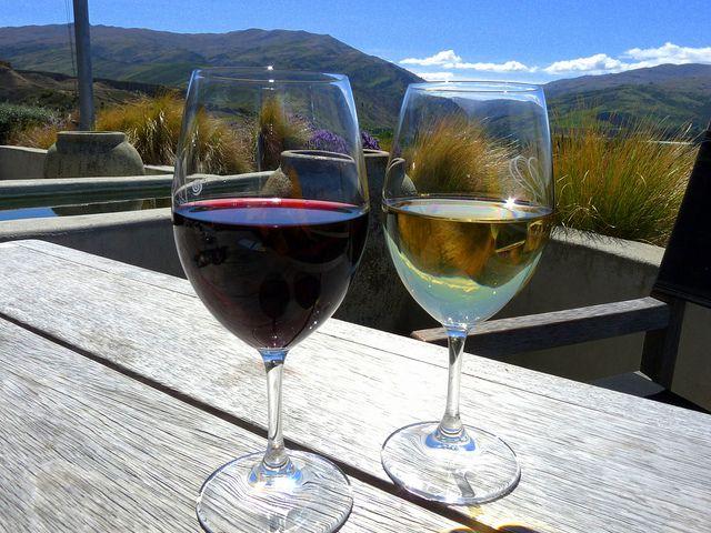 9 World Class Wine Regions in New Zealand