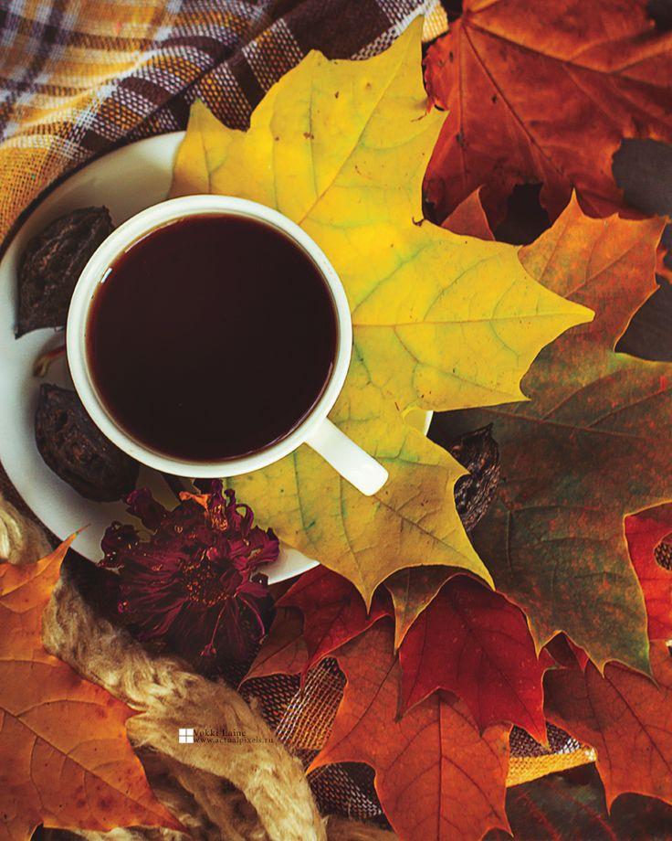 картинки осень кофе листья думаю, что