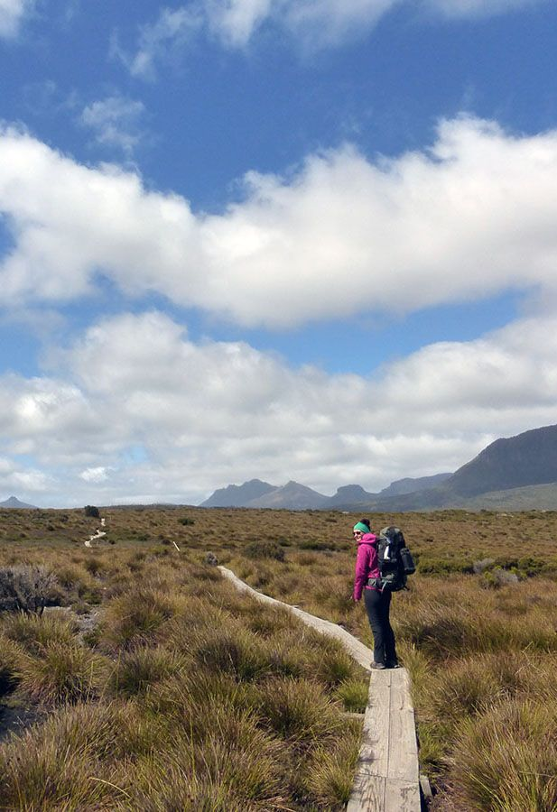 Hiking the Overland Track in Tasmania. Want to get inspired? Then visit our blog with our list of 10 best hikes in Tasmania, from short and easy strolls to strenuous overnight trips!