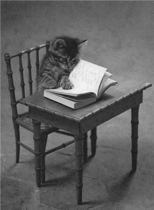 Love a good book...