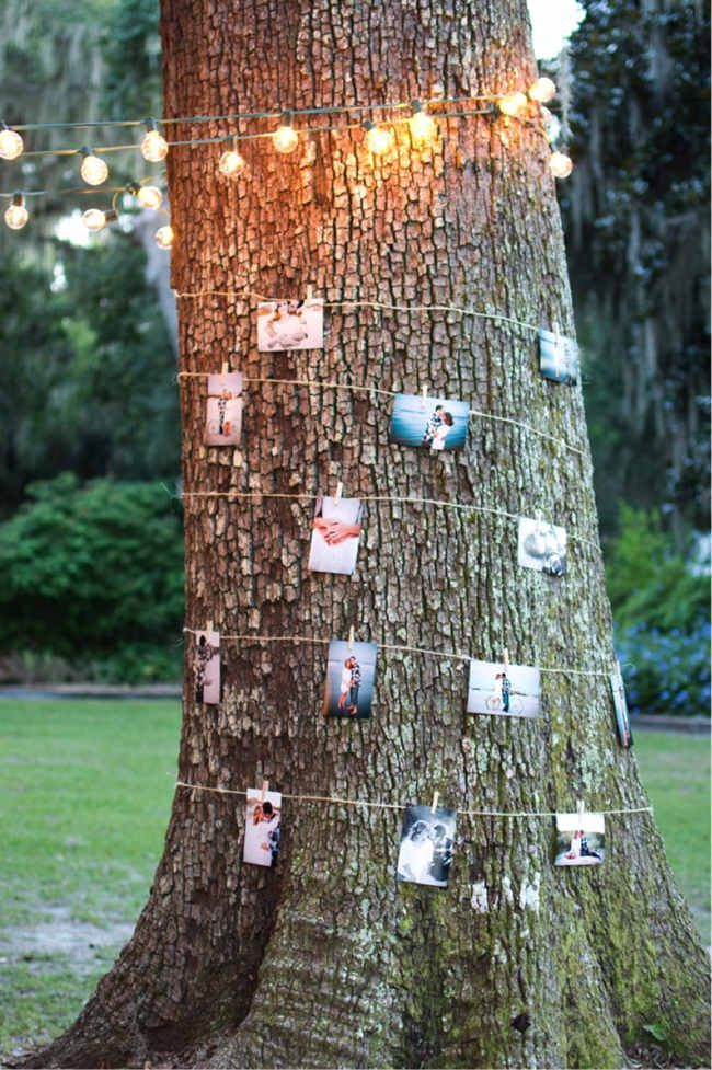 Story of Us – Tree with Photos - 17 Homemade Wedding Decorations for Couples on a Budget - EverAfterGuide