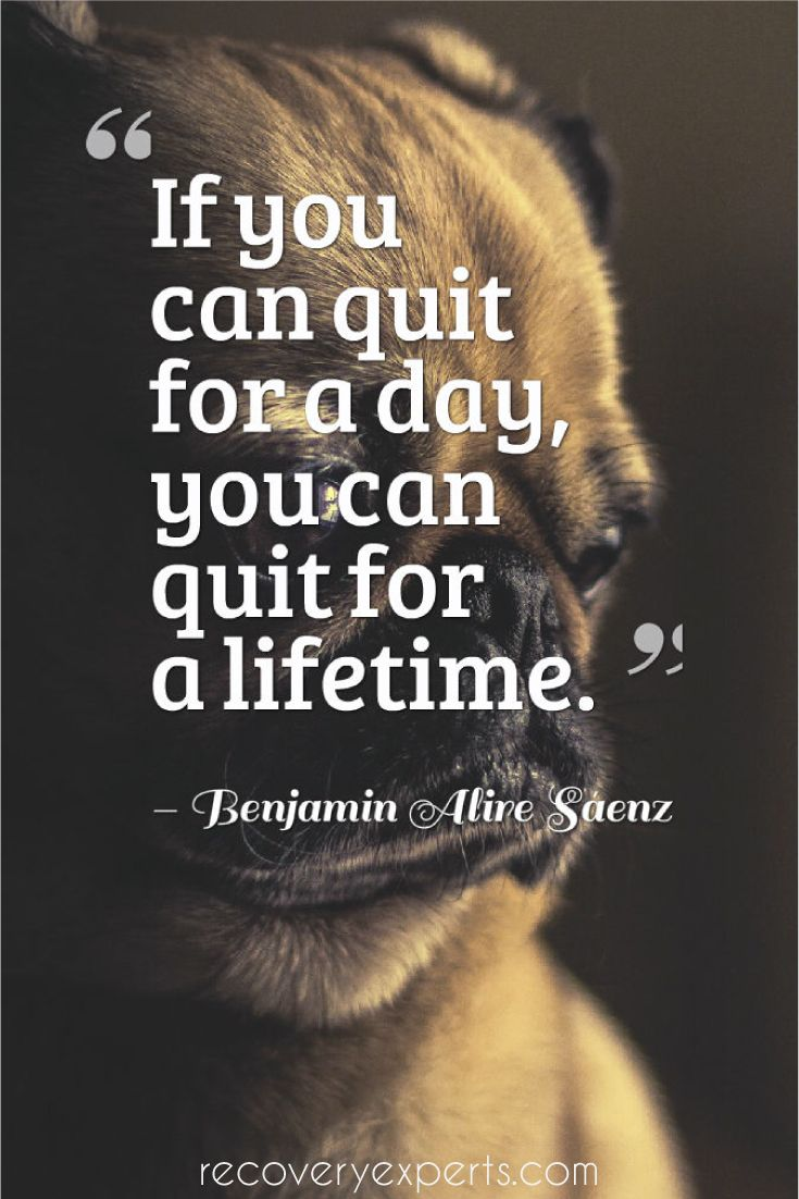"Motivational Quote: ""If you can quit for a day, you can quit for a lifetime."" – Benjamin Alire Sáenz  Follow: https://www.pinterest.com/recoveryexpert/                                                                                                                                                                                 More"
