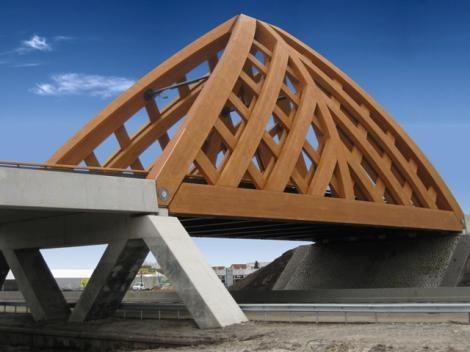 Construyen el puente de pino radiata más largo del mundo