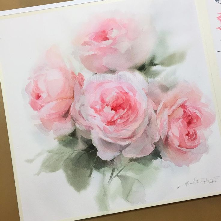 """""""More roses today, Sennelier on Arches(Cold press) #watercolor #watercolorist…"""