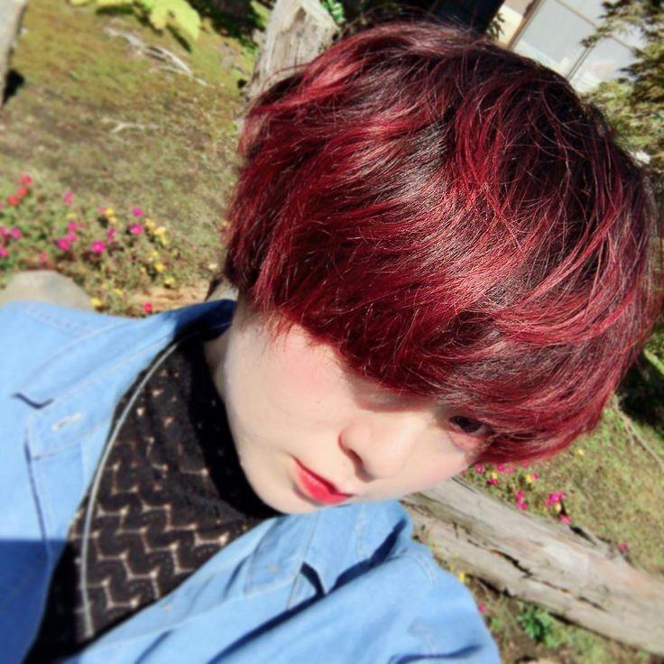 髪染めました マニパニ の エレクトリックラヴァ このくらいの明る