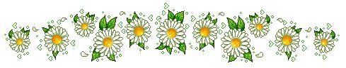 Voluntarios Reiki por Amor (Modelando la Vida con la Abuela Uba).: Flores del Dr. Edward Bach.