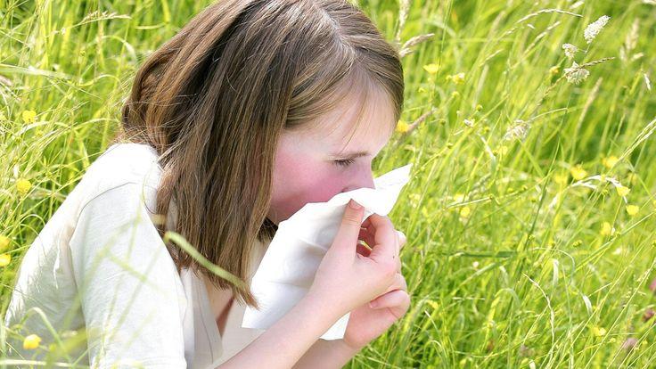 Stiftung Warentest hat für stern.de die günstigsten und besten Mittel gegen Pollenallergie zusammengestellt.