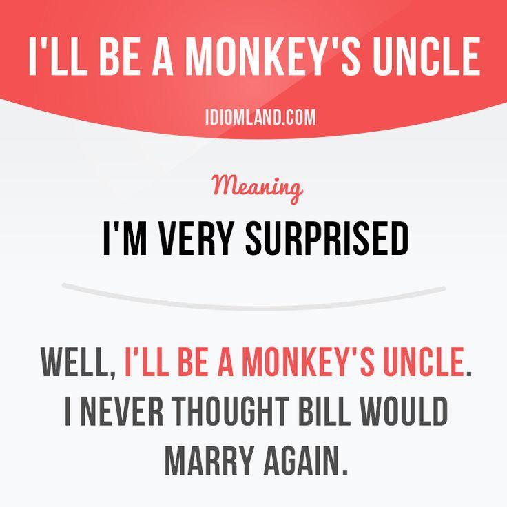 Will you be a monkey's uncle? :) #idiom #idioms #slang #saying #sayings #phrase #phrases #expression #expressions #english #englishlanguage #learnenglish #studyenglish #language #vocabulary #efl #esl #tesl #tefl #toefl #ielts #toeic #monkey #uncle
