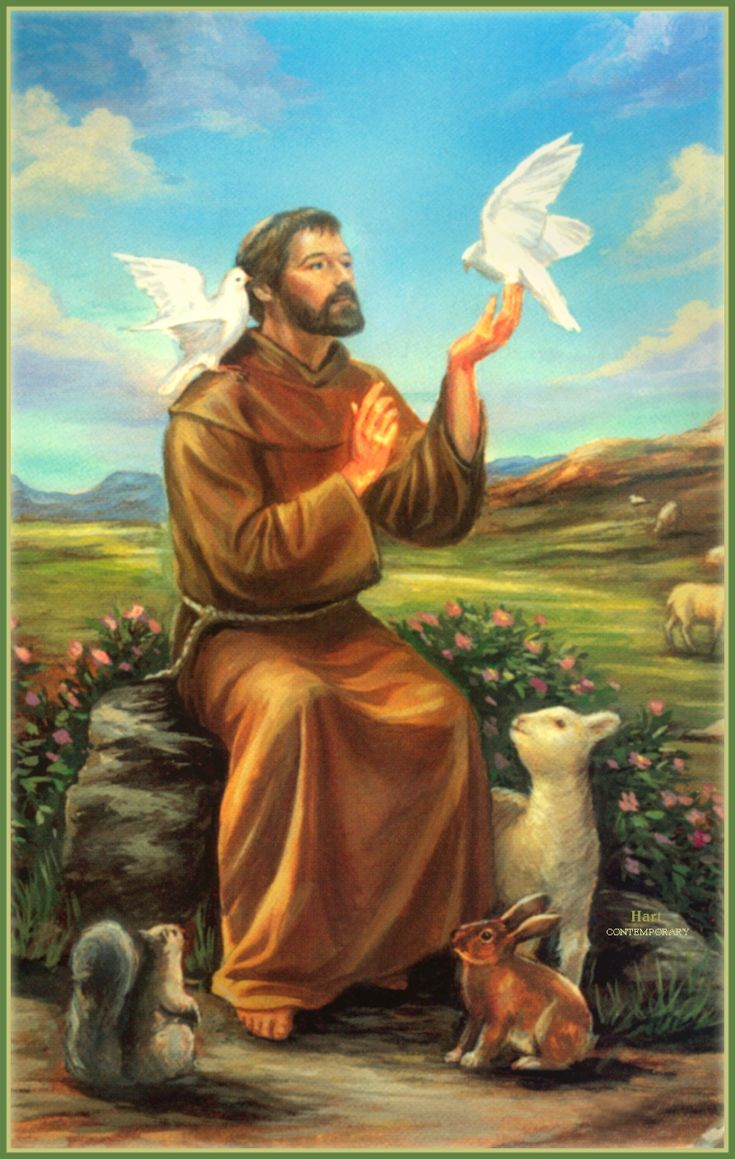 Francis of Assisi helps with family happiness, spiritual wisdom, strength, animals, personal protection, peace
