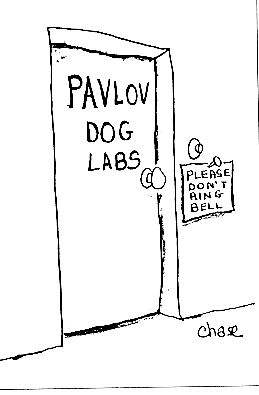 Amazing joke: Pavlov dog labs.