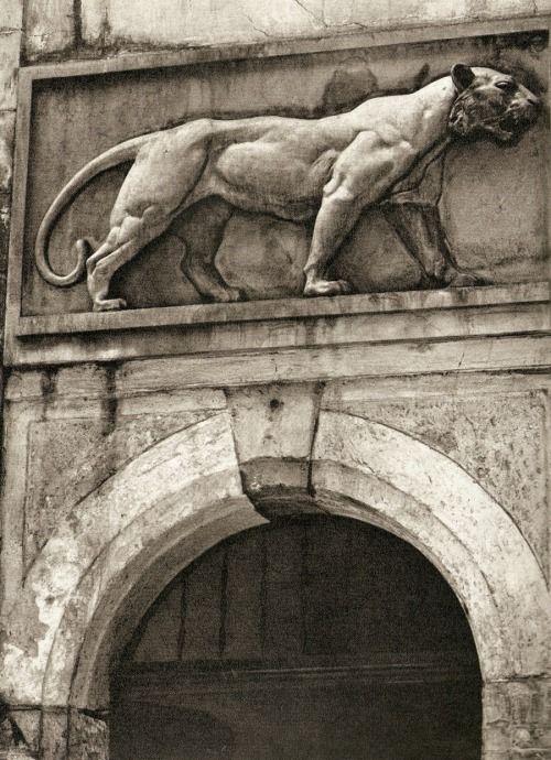 Prague by B.Landisch (House At The Golden Tiger)