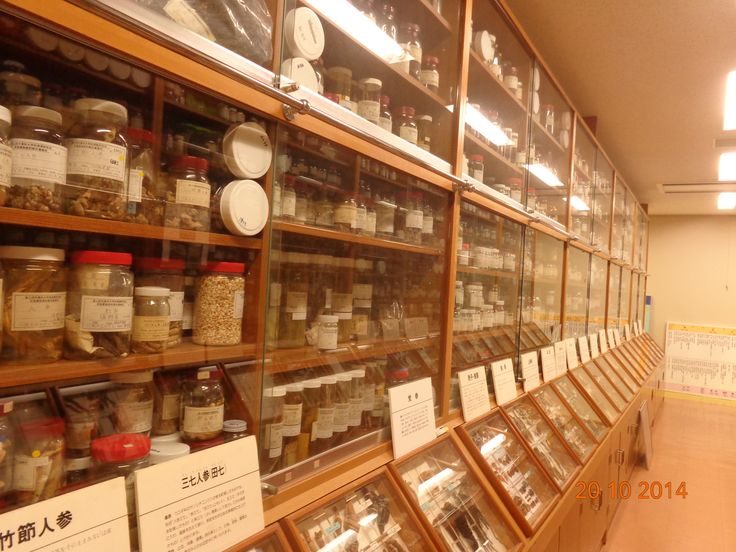 All of the traditional materials in the museum, they are used as Kempo medicine in Japan.