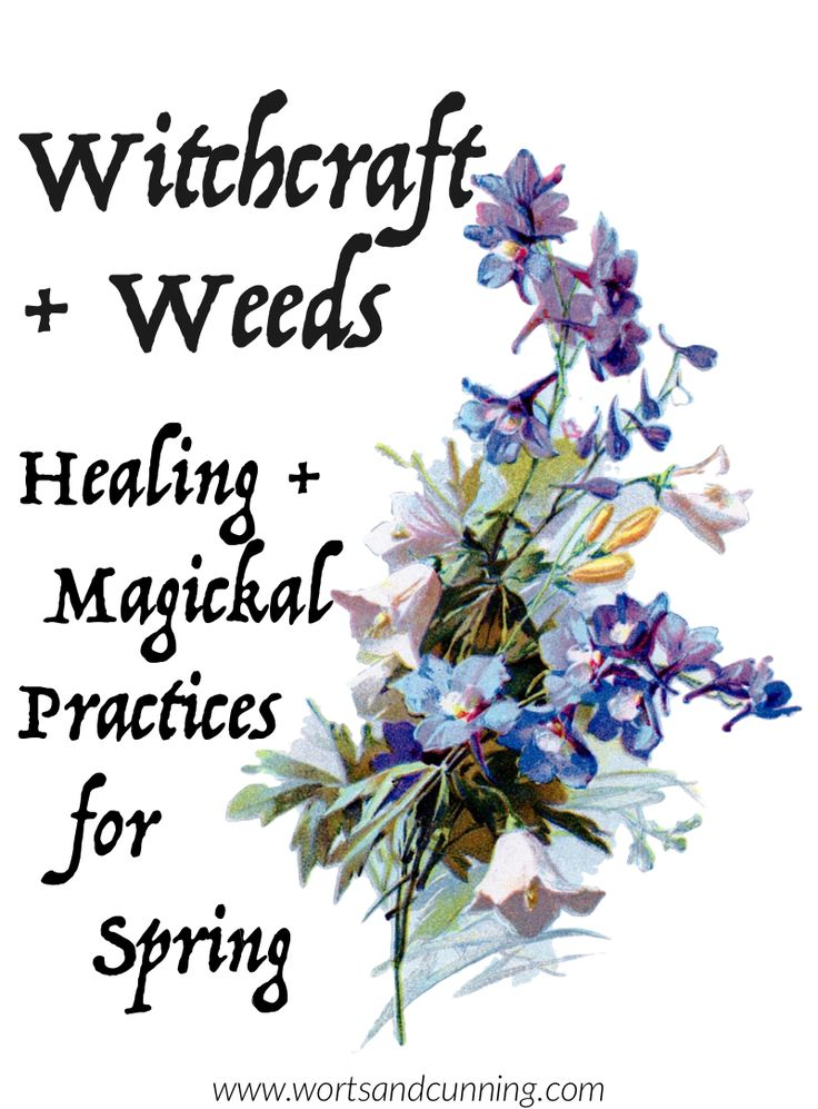 Weeds + Witchcraft: Healing + Magickal Practices for Spring  http://www.wortsandcunning.com/blog/weeds-and-witchcraft-spring