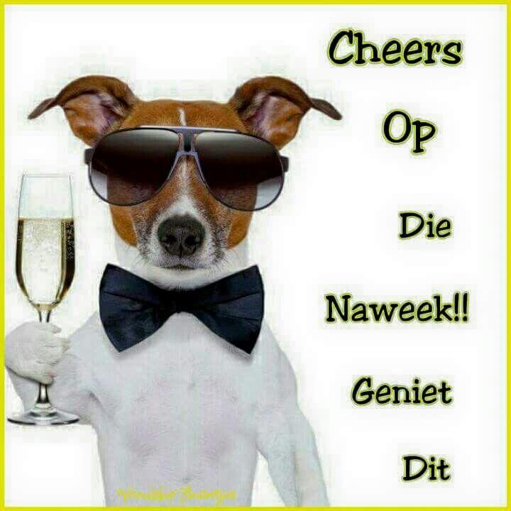 Cheers op die naweek