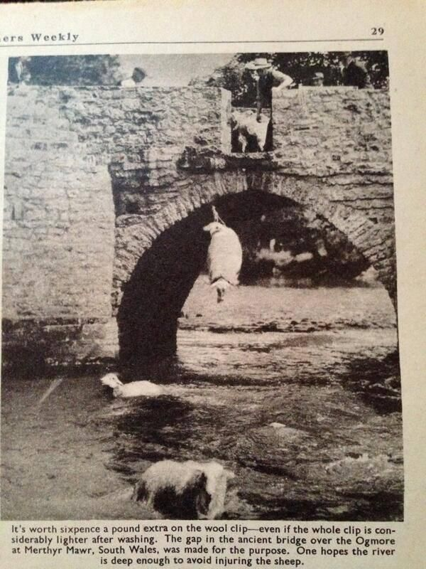 South Wales.....Loved this old picture of washing sheep before shearing