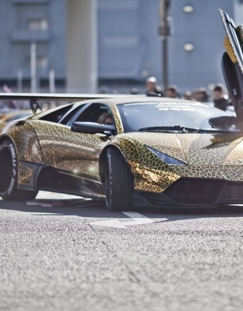 Ordinaire Leopard Spotted Gold Lamborghini
