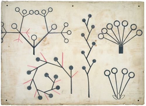Christopher Dresser - Botanical lecture diagram [1855]