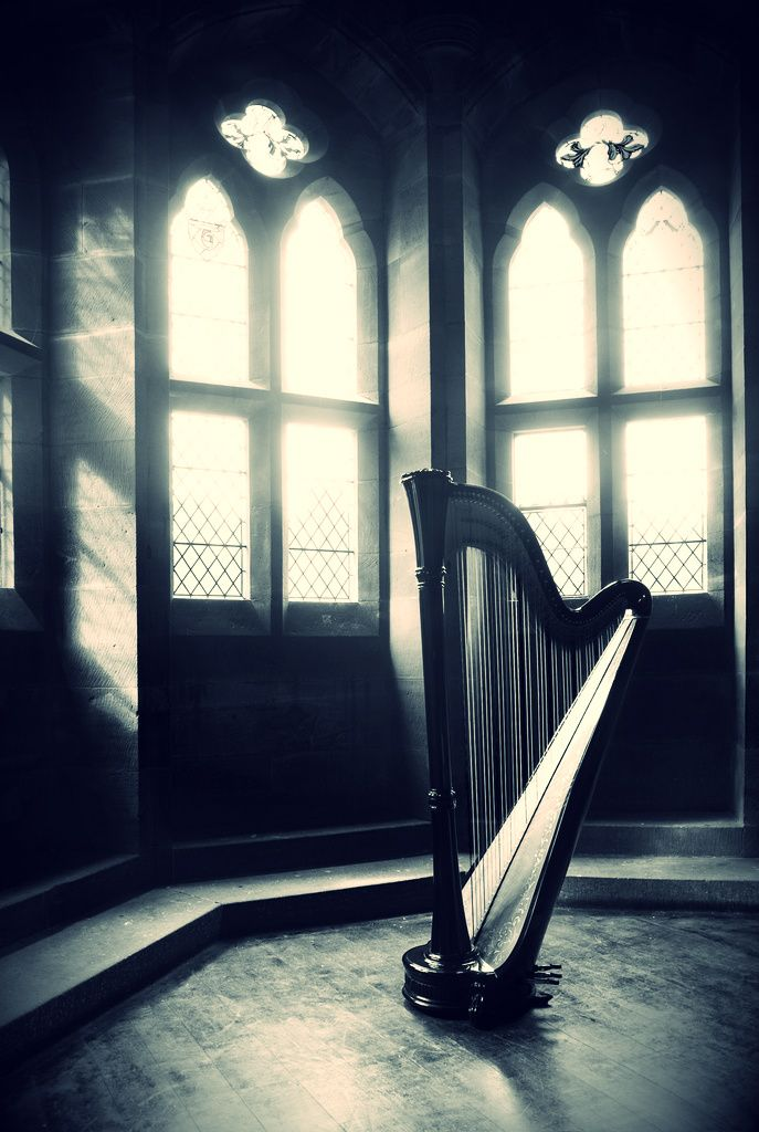 I've always wanted to learn to play, harp, violin and piano. They are my favorite instruments.