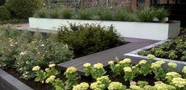 GAKO is een professioneel hoveniersbedrijf en specialist in groenvoorziening. Onze enthousiaste manier van werken heeft geleidt tot tevreden klanten en een uitgebreide klantenkring. De naam GAKO is ontstaan uit de familienamen 'DE GANS' EN 'KOOIJMAN'.  Een tuin aanleggen wordt door ons netjes, flexibel en transparant op een uiterst deskundige manier uitgevoerd.