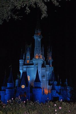 The Blessed Nest: My Top 10 Disney World Tips