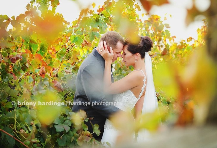 We hosted a wedding at our winery on the weekend - thanks to photographer Briony Hardinge for her photo.
