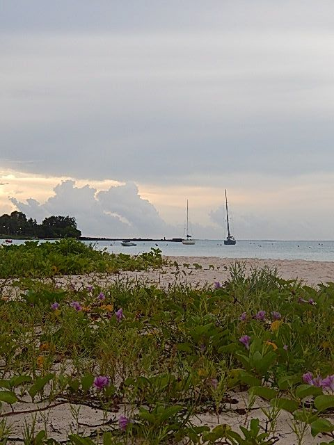 Sunrise, Carlisle Bay, Bridgetown, Barbados - Just footsteps from the Island Inn Hotel