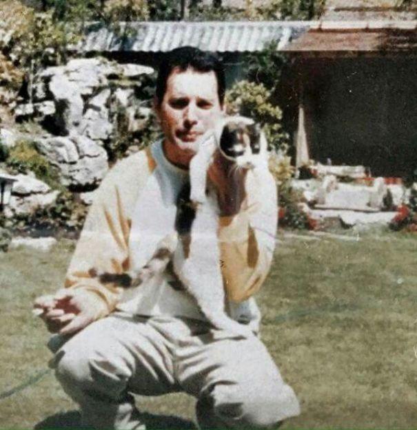 Las Fotos De Freddie Mercury Con Sus Amados Gatos Freddie Mercury Mercury Fredy Mercury