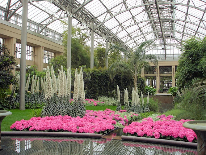 13 best longwood and other gardens images on pinterest for Longwood gardens tickets