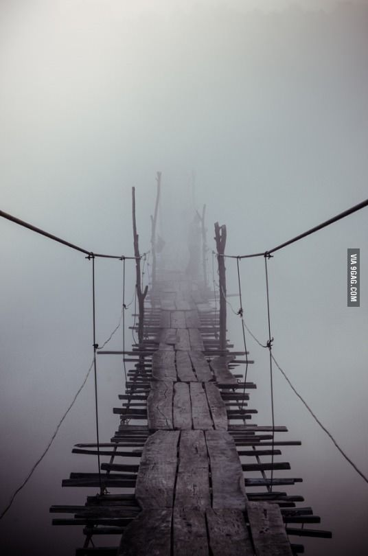 I will just stay here - 9GAG