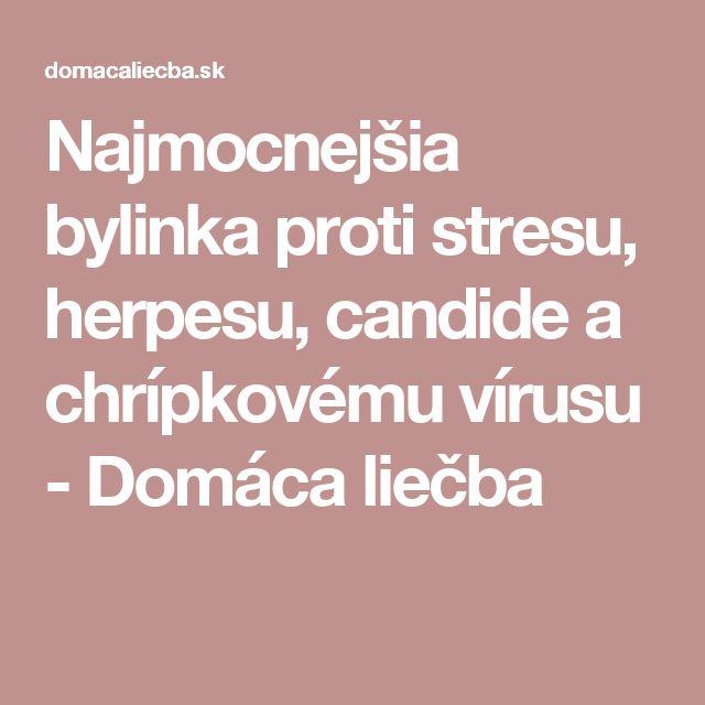 Najmocnejšia bylinka proti stresu, herpesu, candide a chrípkovému vírusu - Domáca liečba