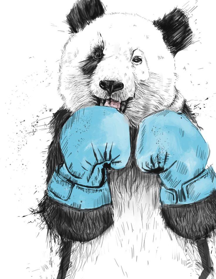 Картинки медведь в перчатках