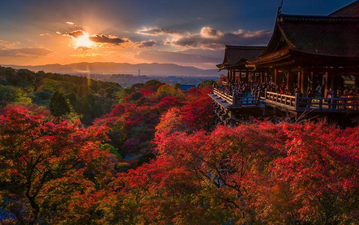 Disfrutando de los últimos días del otoño en Kyoto. love leica