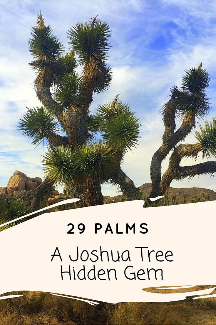 29 Palms, California is an eclectic artistic hub, often overlooked while visiting Joshua Tree that shouldn't be missed!