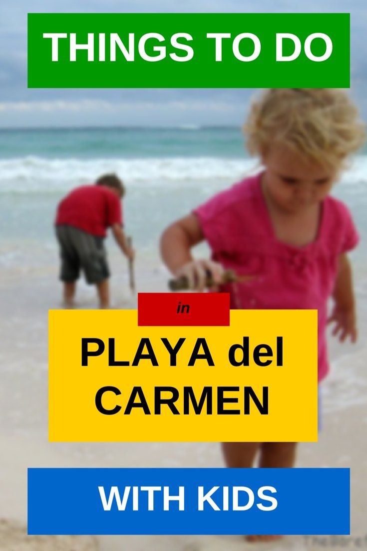 Things to Do in Playa del Carmen With Kids