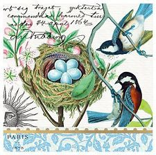 Michel Design Works Bird Nest Cocktail Napkin, Package of 20, 3-Ply, New, Free S
