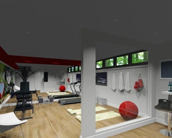 Home Gym Design: Exercise Rooms, Gym Room And Home Gyms