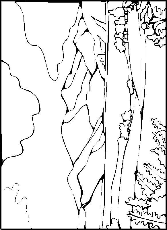 Landscapes Coloring Pages 3