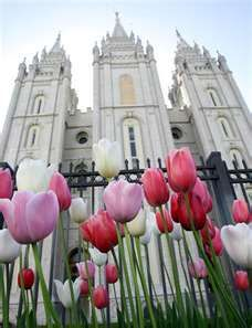 Salt Lake, Utah Temple  Photo found through Bing.com  LDS Temple photo by Keith Johnson for the Deseret News  http://www.visitsaltlake.com/mysaltlake/generalinterest/spring-flowers-at-the-lds-temple/  #LDS, #Temple, #Utah