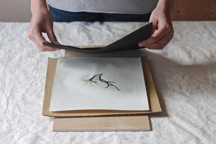 DIY pressed seaweed